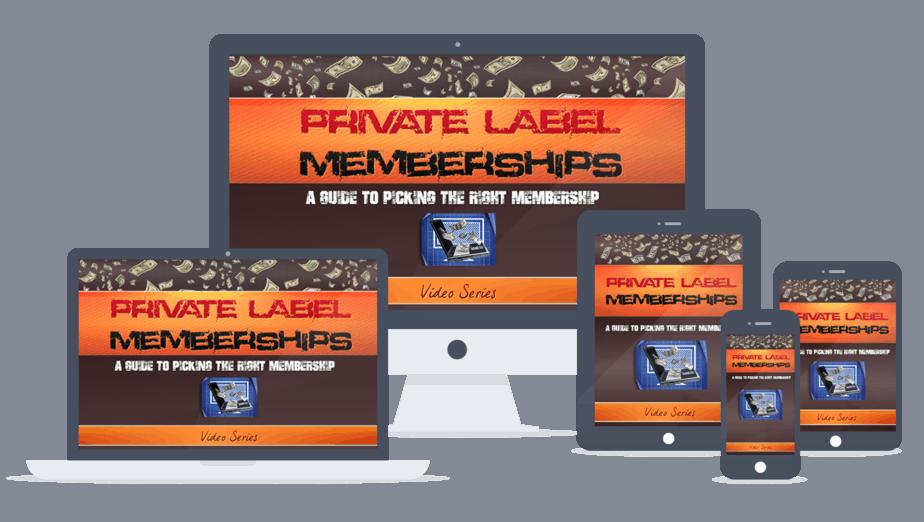 Private Label Memberships PLR Lead Magnet