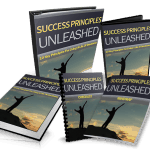 Success Principles Unleashed PLR Ebook Resell PLR