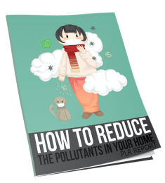 How to Reduce the Pollutants in Your Home Report