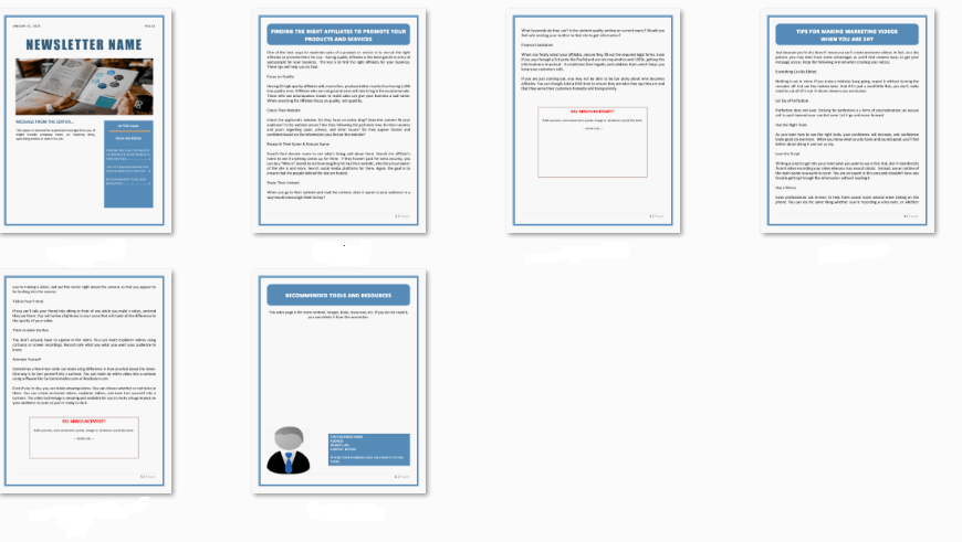 IM and Business PLR Newsletters Screen Shot