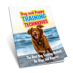 Dog and Puppy Training Techniques Exclusive PLR eBook 10k Words