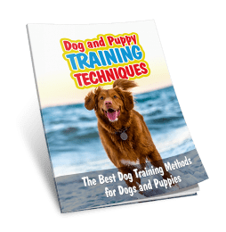 Dog and Puppy Training Techniques Cover