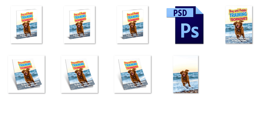 Dog Training PLR Ebook