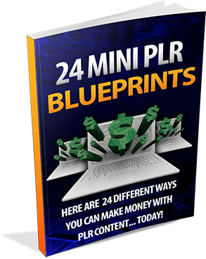 24 Mini PLR Profit Blueprints