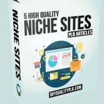 5 High Quality Niche Sites PLR Articles