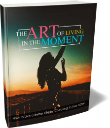 Art Of Living In Moment MRR Lead Magnet and Squeeze Page