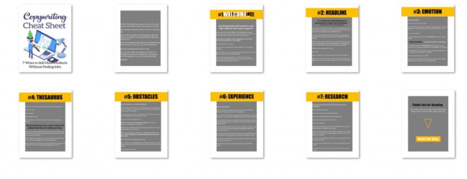 Copywriting Cheat Screenshots of Product