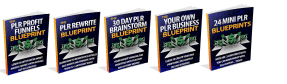 PLR Profits Bundle