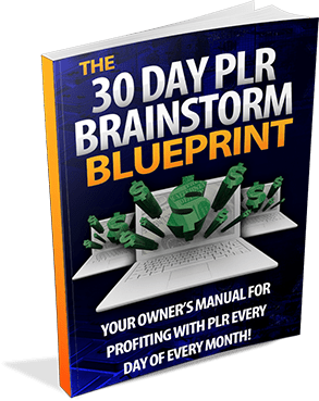 The 30 Day PLR Brainstorm