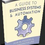 Biz Systems PLR eBook