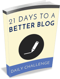 Boost Blog Challenge PLR eBook