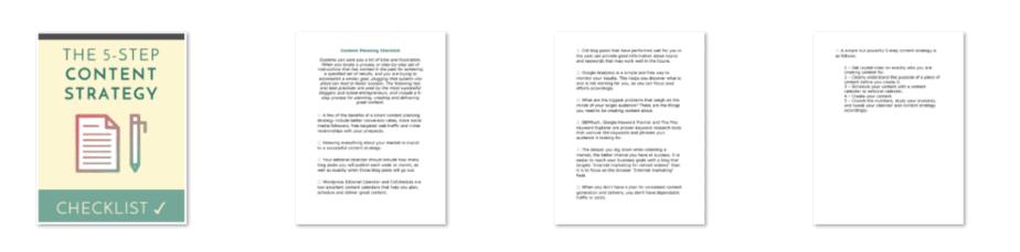Content Planning PLR Checklist Inside Look