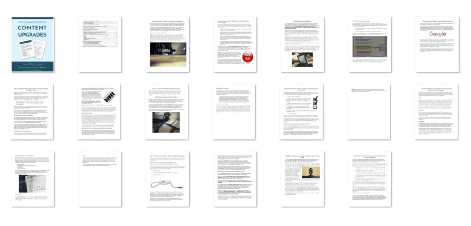 Lead Magnet Creation PLR eBook Screenshot