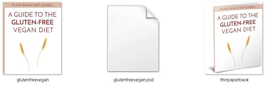 Gluten Free PLR Editable Ecover Files