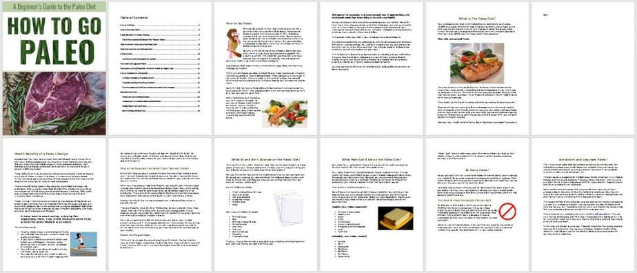 Go Paleo Premium PLR Ebook Sneak Preview