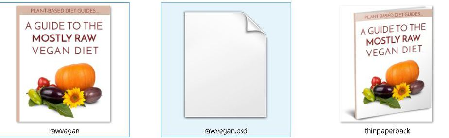 Mostly Raw Editable Ecover Files