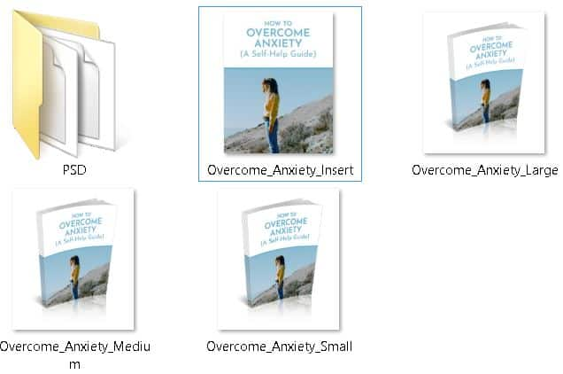Overcoming Anxiety Premium PLR Ecovers