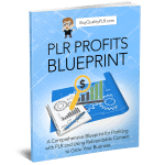PLR Profits Blueprint