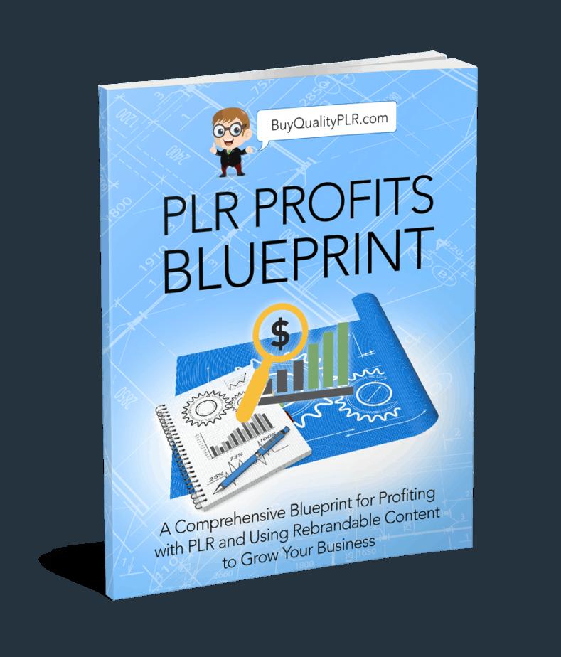 PLR Profits Blueprint