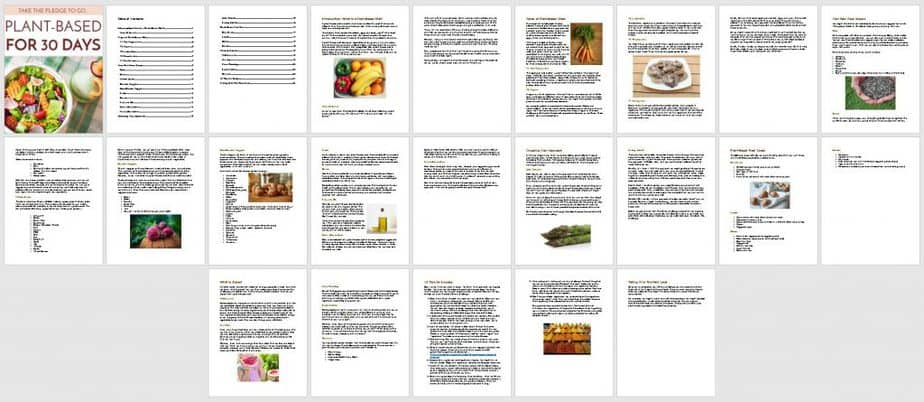 Plant Based Diets Premium PLR Ebook Sneak Preview
