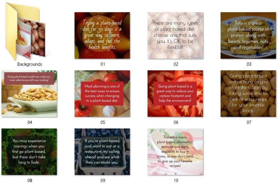 Plant Based Diets Premium PLR Social graphics