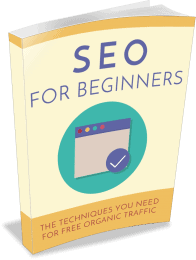 SEO for Beginners PLR eBook