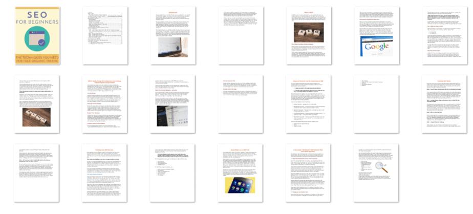 SEO for Beginners PLR eBook Inside Look