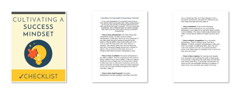 Success Mindset PLR Checklist Inside Look