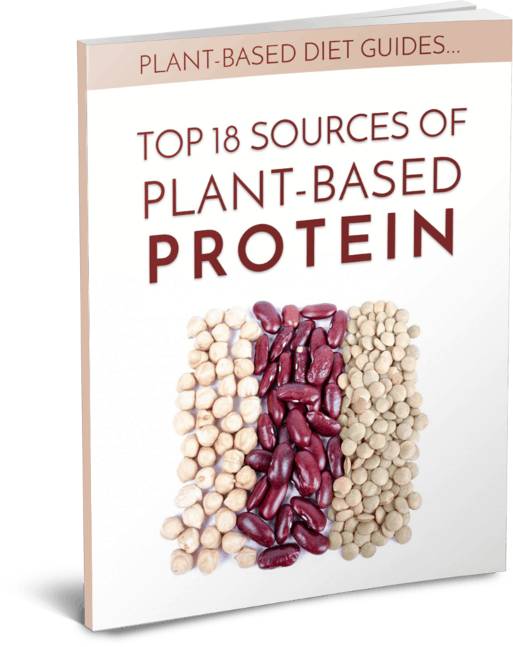 Plant Based Protein PLR Report