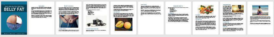 Belly Fat Premium PLR Report Sneak Preview