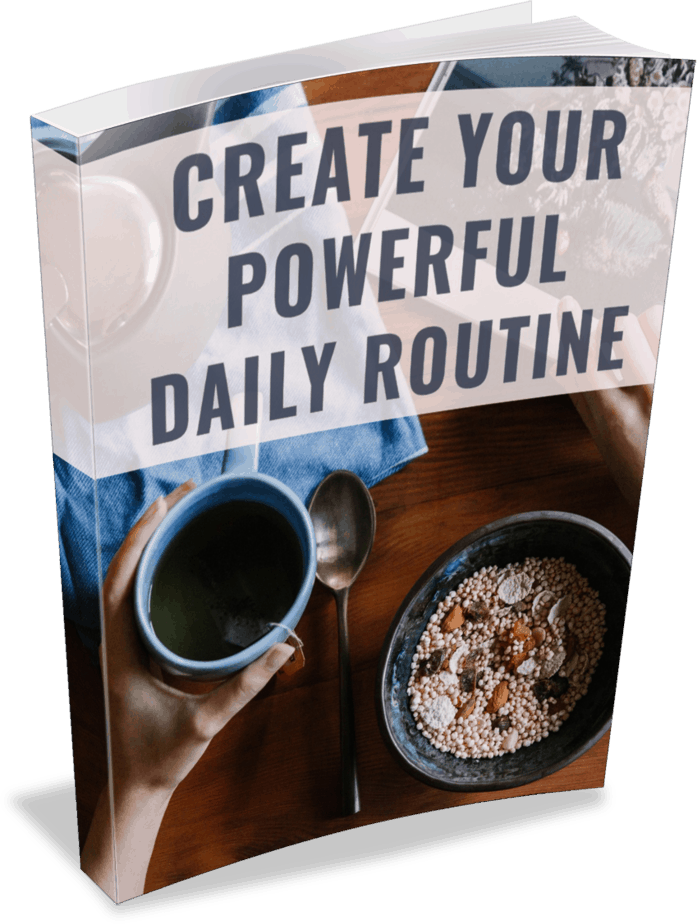 Routine Premium PLR Ebook