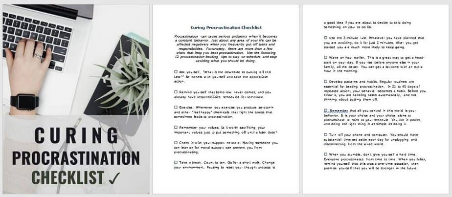 End Procrastination Premium PLR Checklist Sneak Preview