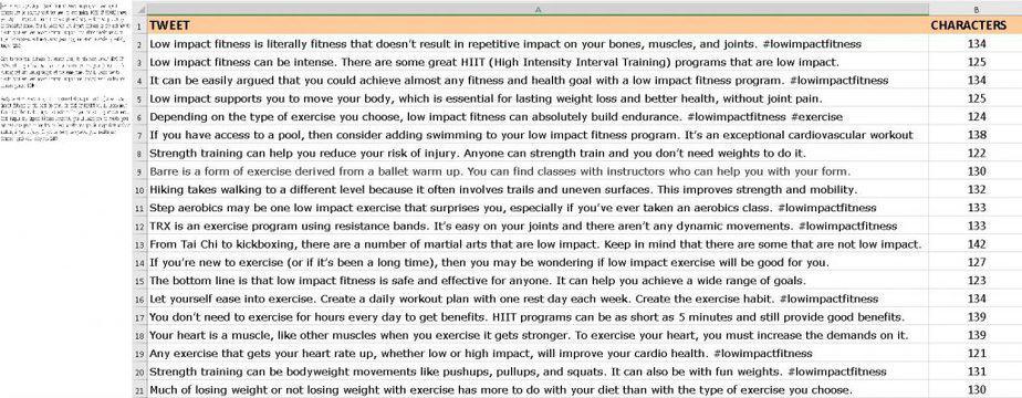 Low Impact Fitness Premium PLR Social Media Tweets