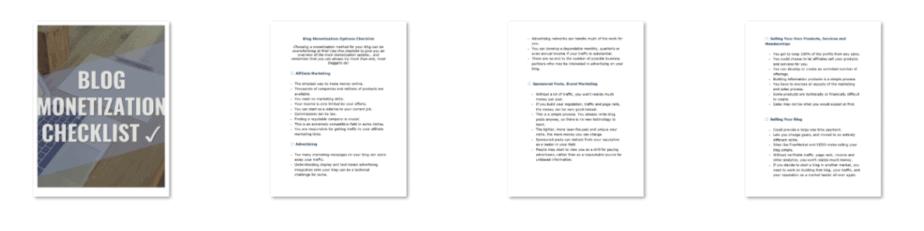 Monetize Your Blog PLR Checklist Inside Look