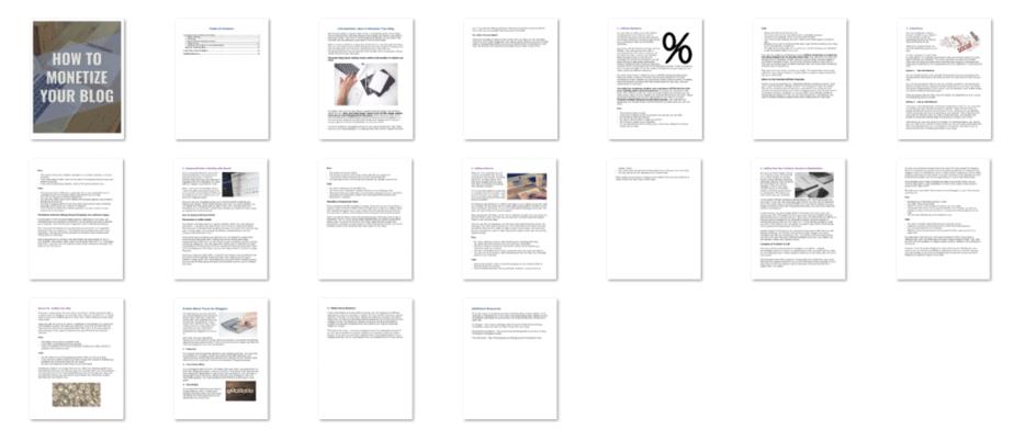 Monetize Your Blog PLR eBook Inside Look