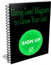 Using Lead Magnets to Grow Your List PLR Report