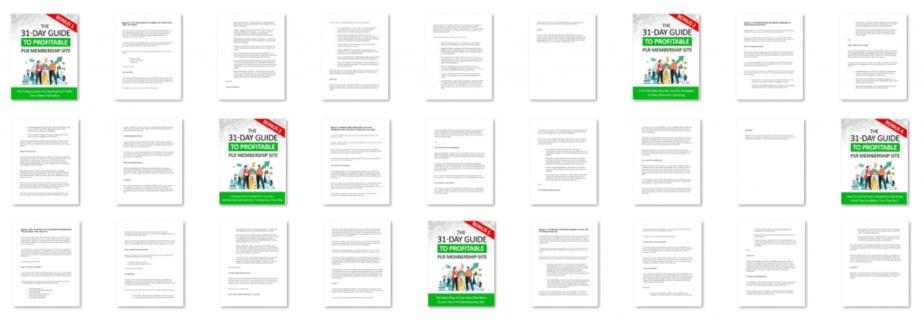 Guide To A Profitable PLR Membership Site PLR Content