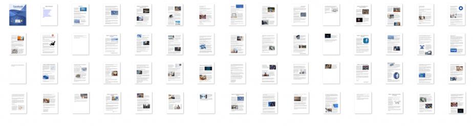 Facebook Marketing Unleashed PLR eBook Resell PLR Screenshot