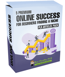 5 Premium Online Success For Beginners Finding a Niche PLR Articles Pack