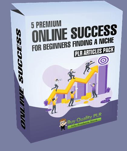5 Premium Online Success For Beginners Finding a Niche PLR Articles Pack