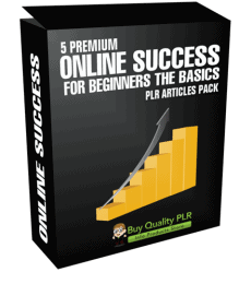 5 Premium Online Success For Beginners The Basics PLR Articles Pack