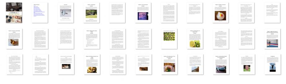 A Guide to Optimum Nutrition PLR eBook Resell PLR Screenshot