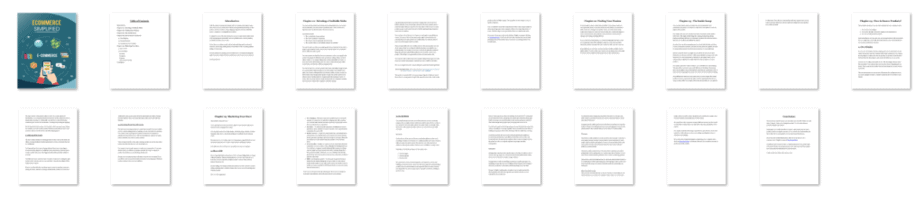 Ecommerce Simplified PLR eBook Resell PLR Screenshot