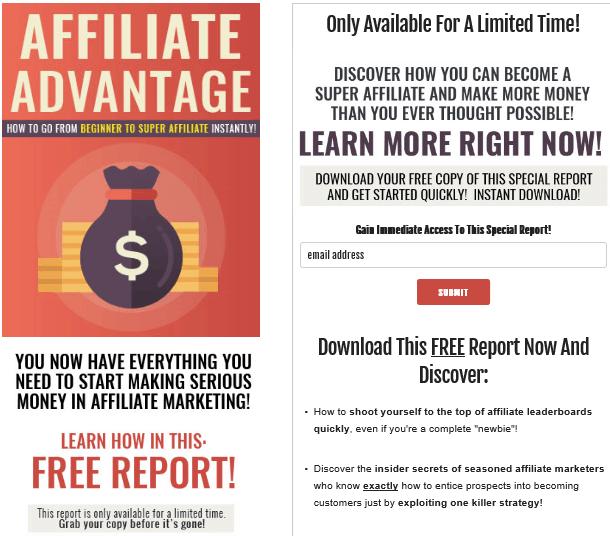 Affiliate Advantage PLR Lead Magnet Kit Squeeze Page