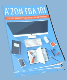 Amazon FBA PLR Lead Magnet Kit eCover