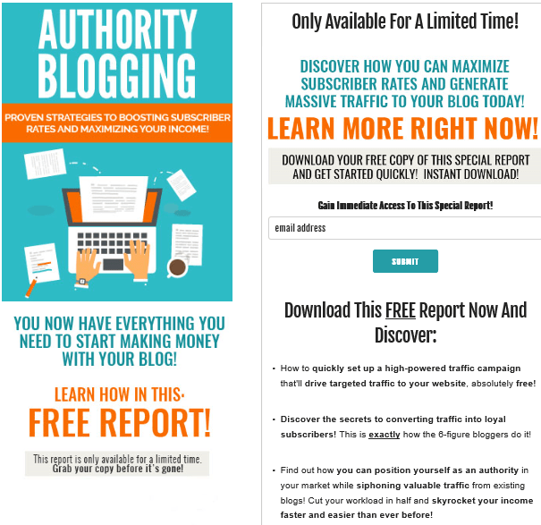 Authority Blogging PLR Lead Magnet Kit Squeeze Page