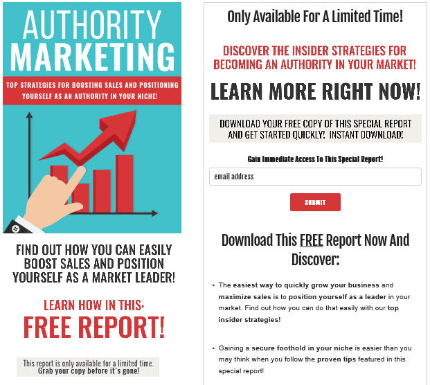 Authority Marketing PLR Squeeze Page