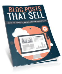 Blog Posts That Sell PLR Lead Magnet Kit Report eCover