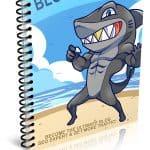 Blog SEO PLR Lead Magnet Kit eCover