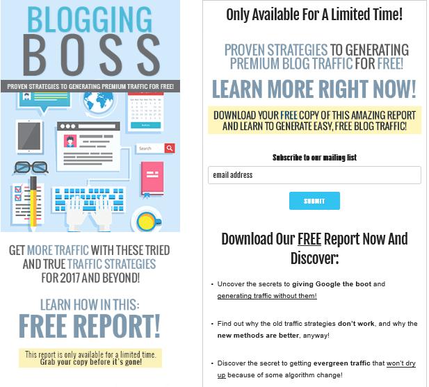 Blogging Boss PLR Lead Magnet Kit Squeeze Page
